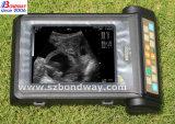 초음파 기계의 농장 동물 임신 스캐닝
