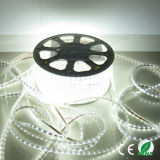Multi Farben-flexibles wasserdichtes Streifen-Licht China-LED für Decaration
