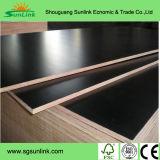構築、装飾および家具(W14031)のための高品質の合板