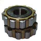 Cylinderical Rolle NTN, die Exzenterpeilung 85uzs419t2-Sx trägt