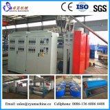 Производственная линия штрангпресс циновки ковра циновки катушки цвета PVC двойная