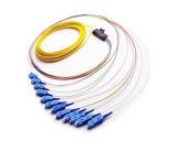 Treccia colorata uscita della treccia della fibra dello Sc Upc delle 12 fibre