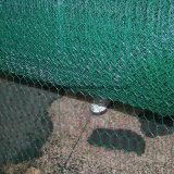 六角形の鶏の鳥の飼鳥園の金網の網