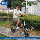 12 bici eléctrica plegable de la ciudad de la pulgada 48V 250W (THZ1-40OEM)