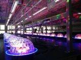 Luz mágica colorida única del LED Starball para la etapa con Ce