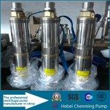 Pompe d'étang d'eau solaire submersible à 100 m DC