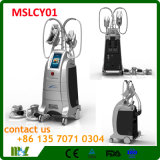 Qualité 4 traitements Cryolipolysis amincissant la machine Mslhcy01