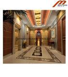 Общественный подъем пассажира для лифта гостиницы