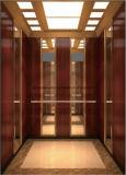 Подъем Hl-X-026 лифта дома подъема лифта пассажира