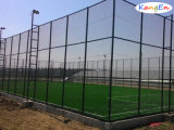 Dominer The Market, Environmentally Friendly Artificial Grass pour Football/Soccer Grass