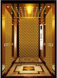 O espelho do elevador do elevador do passageiro gravou o Sr. & o Mrl Aksen Ty-K200