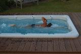 ¡2016 nuevo! BALNEARIO al aire libre libre de la nadada de la piscina