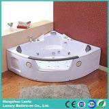 Bañera fácil del claro de la instalación con 2 almohadillas (control del panel de la computadora TLP-632)