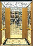 Г-н подъема лифта пассажира вытравленный зеркалом & Mrl Aksen Ty-K176