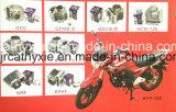 Piezas de Motocicleta Cilindro de Motocicleta de Buena Calidad del OEM