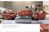 Modernes Wohnzimmer-Möbel-Leder-Sofa mit echtem Leder