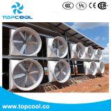 """"""" solution de ventilation de ventilateur d'extraction de la fibre de verre 72 pour les porcs et la laiterie"""