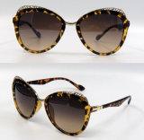 Gafas de sol plásticas de la manera del diseñador a estrenar para las mujeres/señora (DP1275YZ)