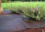 Tissu de barrière de stipe plumeux de lutte contre les mauvaises herbes de tissu d'horizontal de couvre-tapis de Weed