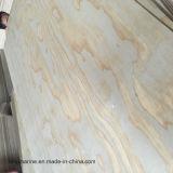 Cara del pino y madera contrachapada posterior para consolidar las casas C/C WBP