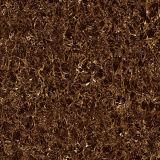 유리화된 두 배 선적은 Nano 타일을 붙인다 (L6901A)