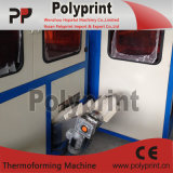 High Speed (PPTF-70T)를 가진 PP Cup Thermoforming Machine