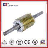 Motor de CA eléctrico del freno de la inducción de Embr con el arrabio