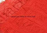 Sciarpa acrilica della piega dello scialle del Crepe tinta modo per le signore (ABF22004021)