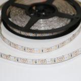 Tiras do diodo emissor de luz do fabricante de China