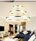 Luz maravillosa del colgante de Pasillo LED del hotel del diseño de la nueva alta calidad