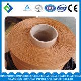 Cuerda suave sumergida 1100dtex /2X3, 2X5 del poliester