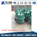 Qualität, welche die pneumatische versenkbare Pumpe 2HP hergestellt in China gewinnt