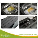 高品質30W 50W 60W 80W 100W 120W 150W 180W 200W 240Wの穂軸LEDの街灯