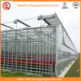 냉각 장치를 가진 농업 또는 상업적인 폴리탄산염 장 천막