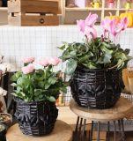 (BC-WF1018) Чисто Handmade естественная корзина цветка вербы