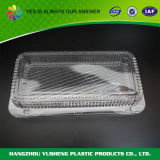 Blister Disposable Clamshell Food Container