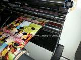 Kalte Laminiermaschine des RollenKfm-1020 für manuelle Laminierung-Druckmaschinen