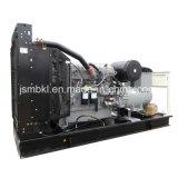 Garantie la plupart de groupe électrogène 220kw/275kVA diesel célèbre avec l'engine de Perkins