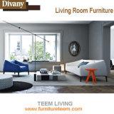 Teem o sofá exclusivo do desenhador da mobília viva de Divany