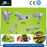 Linha de secagem Multifunctional de vegetal de raiz do aço inoxidável