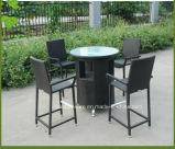 بالجملة حديقة أثاث لازم [ويكر] فناء [رتّن] قضيب طاولة وكرسي تثبيت