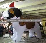 كلب كبيرة قابل للنفخ متطفّل لأنّ خارجيّة يعلن