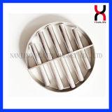 NdFeB magnetischer Filter mit 3 dem magnetischen Rohr-doppelte Schicht-Gitter 12000GS