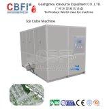 Grande capacidade 10 do cubo toneladas de máquina de gelo