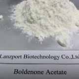 Sicheres Anlieferungs-Steroid-Puder Boldenone Azetat