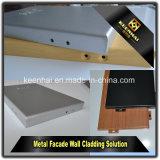 Het kwaliteit-verzekerde Buiten of Binnenlandse Poeder Met een laag bedekte Comité van de Muur van het Aluminium