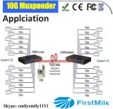 Carrier-Grade manejable Protocolo Múltiple Fibra 10g Media Converter