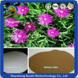 Extracto natural de la extracción el 98% Mesembrine Ruizhi de la planta