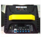 Altoparlante ricaricabile portatile di Feiyang Bluetooth con 2 frequenze ultraelevate Mic--Qx-1014