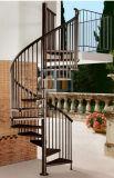 장식적인 나선형 계단 또는 실내 또는 옥외